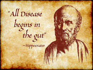 "Quote: ""All Disease begins in the gut"" - Hippocrates"